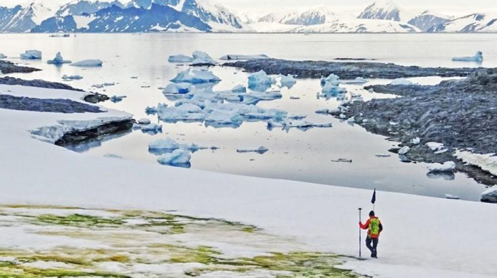 """Antártida: Desde el espacio se ve el avance de """"la nieve verde"""""""