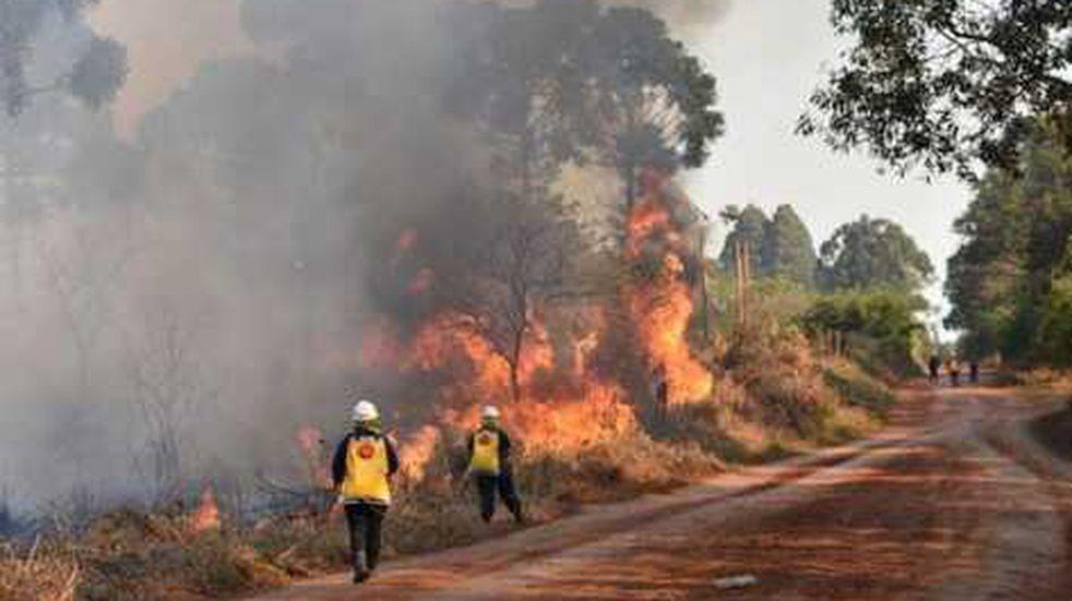 Los incendios intencionales no cesan: continúan denunciando focos en Pozo Azul