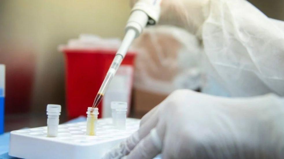 Científicos del INTA Bariloche trabajan en una vacuna contra el coronavirus