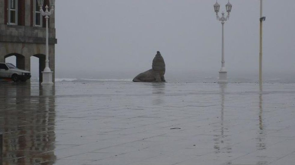 Alerta amarillo: Mar del Plata amaneció con una intensa lluvia