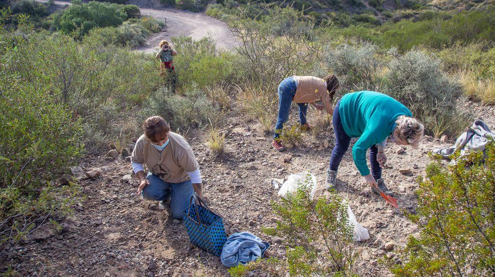 """En el """"Día de la Madre Tierra"""" plantaron semillas autóctonas en el pedemonte"""