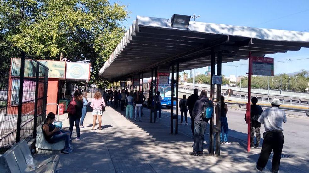 PASO 2021 Mendoza: Transporte sumará frecuencia para ir a votar a escuelas alejadas