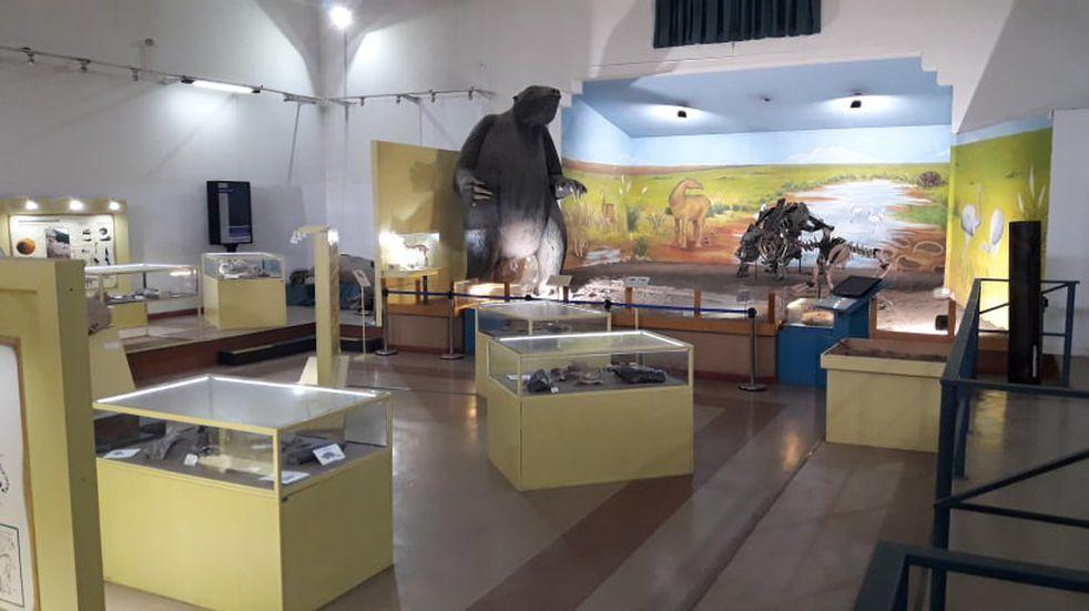 El Museo Darwin llega en forma virtual a tu casa