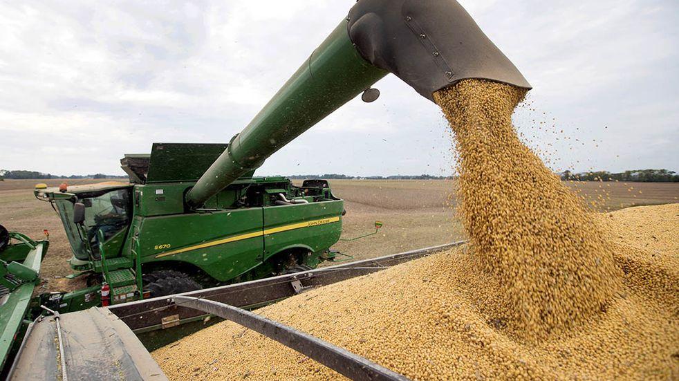 Para el negocio del maíz se vienen tomas de decisiones inminentes