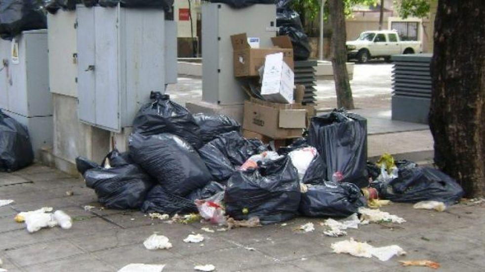 El municipio de capital pidió ayuda al Ejército para la recolección de residuos