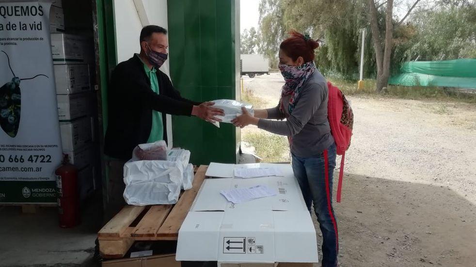 El Iscamen comenzó con la campaña de control de la polilla de la vid. Distribuyen a productores difusores de feronomas e insecticidas. Gobierno de Mendoza