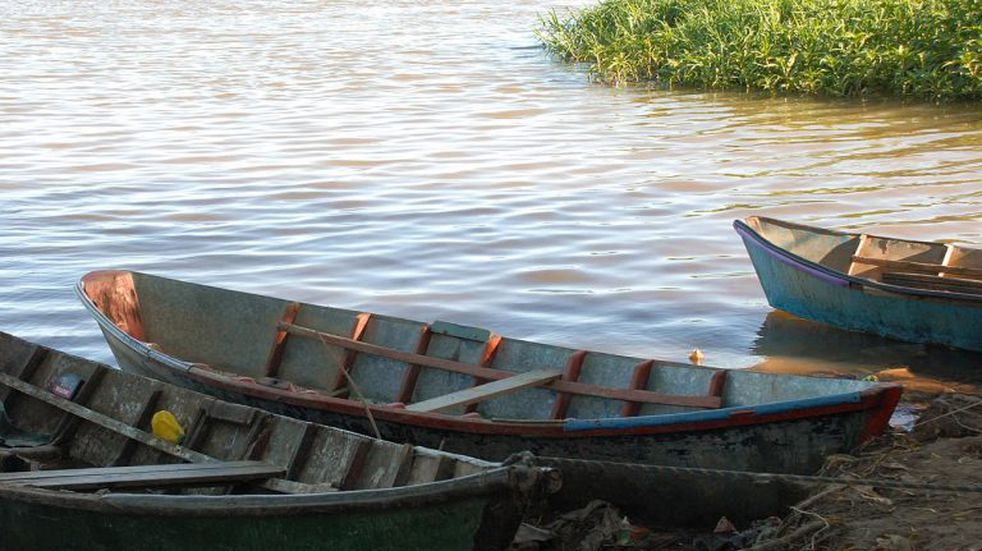 Un kayakista fue sorprendido en el río Paraná por una extraña visita