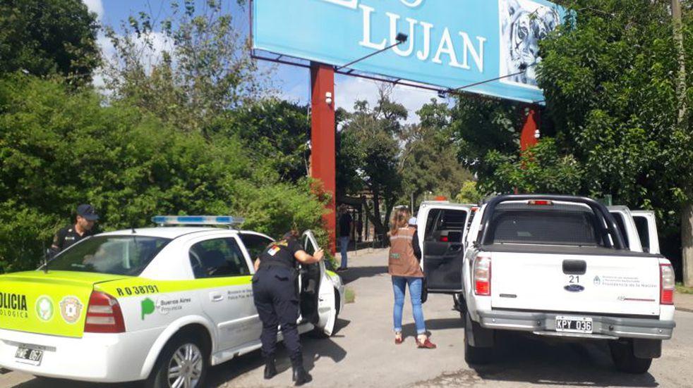 Clausuraron el zoo de Luján por visitantes dentro de las jaulas de los animales