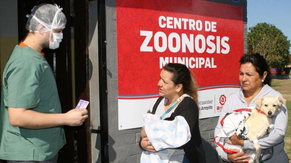 El municipio de Arroyito convoca a médicos veterinarios