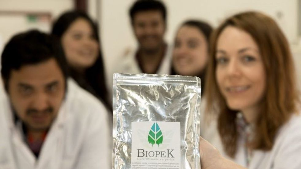Desarrollan perlas biofertilizantes para optimizar cultivos en San Luis