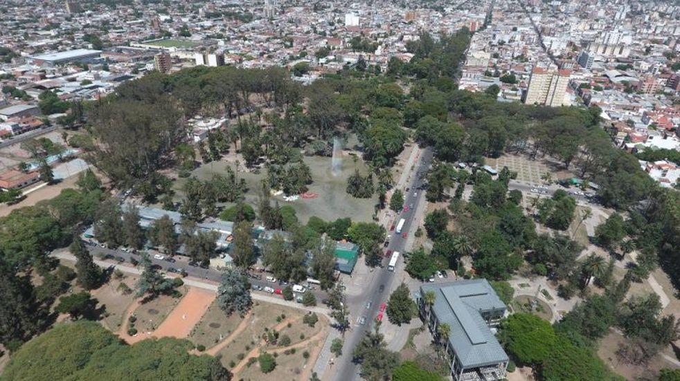 La Municipalidad realizó un mapeo de árboles en el parque San Martín