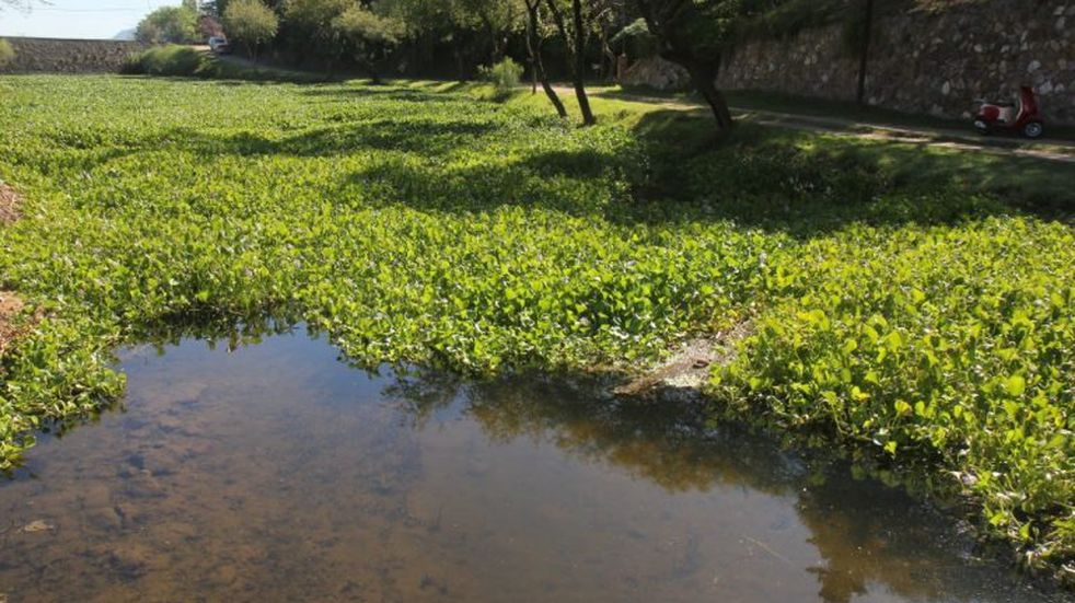 Advierten la pérdida de calidad del agua por los incendios forestales en la Provincia de Córdoba