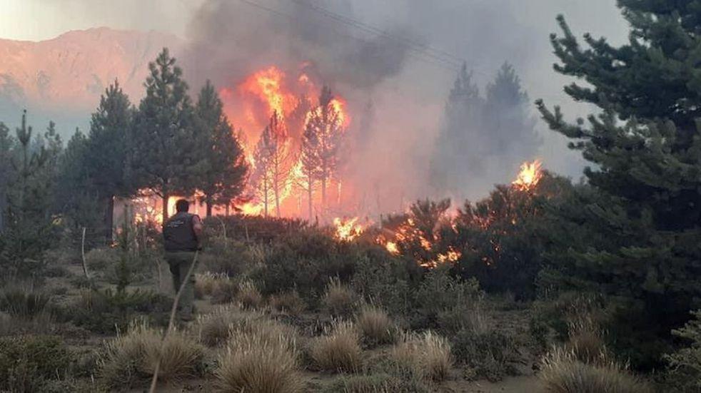El incendio que ya arrasó con unas 10.000 hectáreas en Río Negro se habría iniciado en una vivienda particular