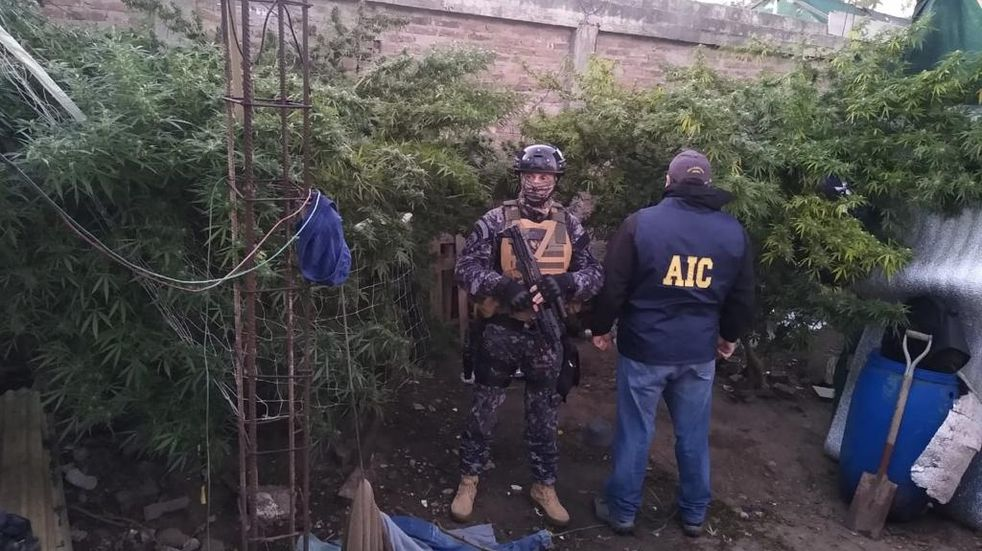 Detienen a tres personas acusadas de disfrazarse de cirujas para robar casas