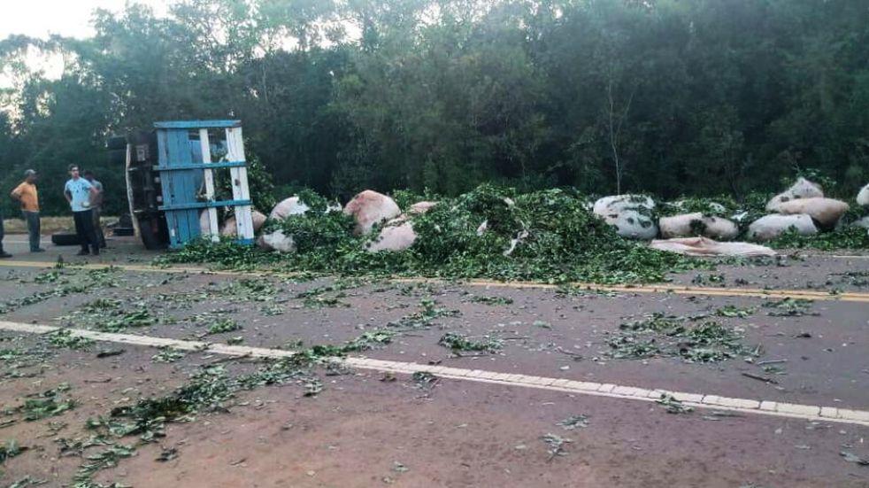 San Vicente: camión que transportaba hoja verde volcó y perdió su carga