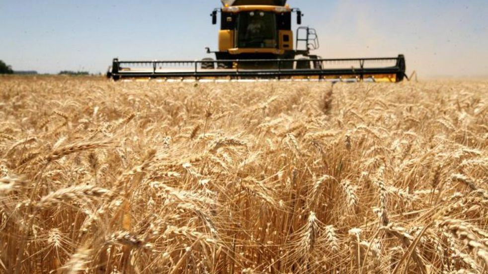 Creció 103% la producción agrícola en Entre Ríos en la campaña 2018/19