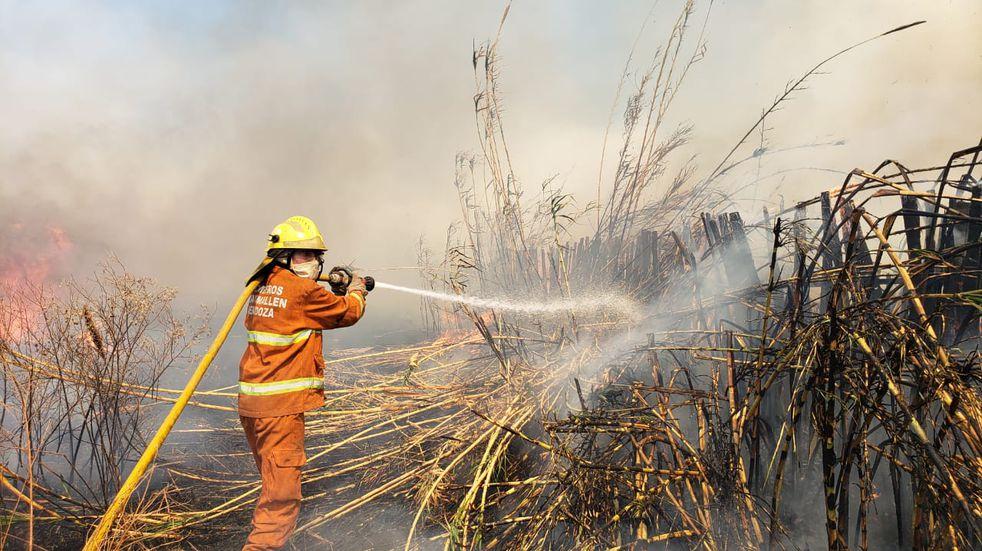 Más de 50 bomberos trabajaron para combatir el fuego en varias zonas de Guaymallén