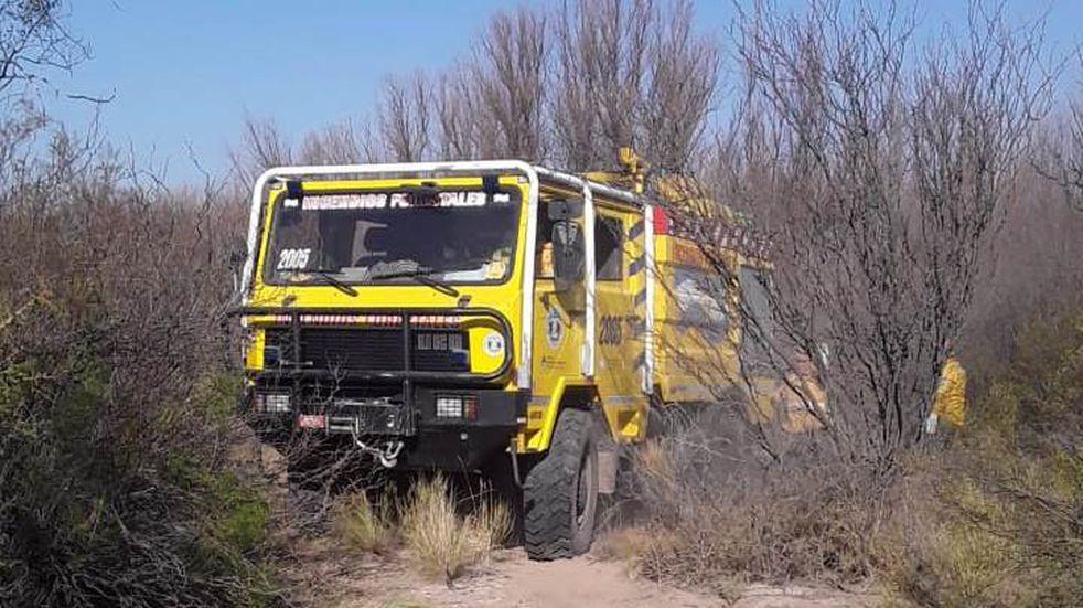 Se quemaron 130 hectáreas de campo a causa de un incendio intencional