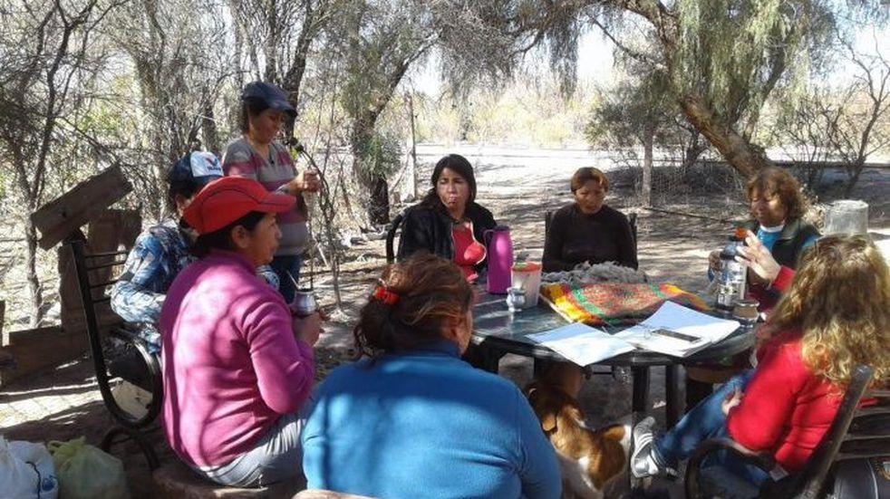 Mujeres del desierto de Lavalle emprenden produciendo lanas artesanales