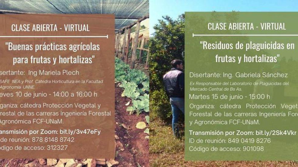 Eldorado: invitan a 2 clases abiertas sobre prácticas y residuos de plaguicidas en frutas y hortalizas
