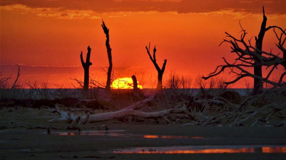 ¿Logrará Ansenuza ser unos de los Parques Nacionales más grande de Argentina?