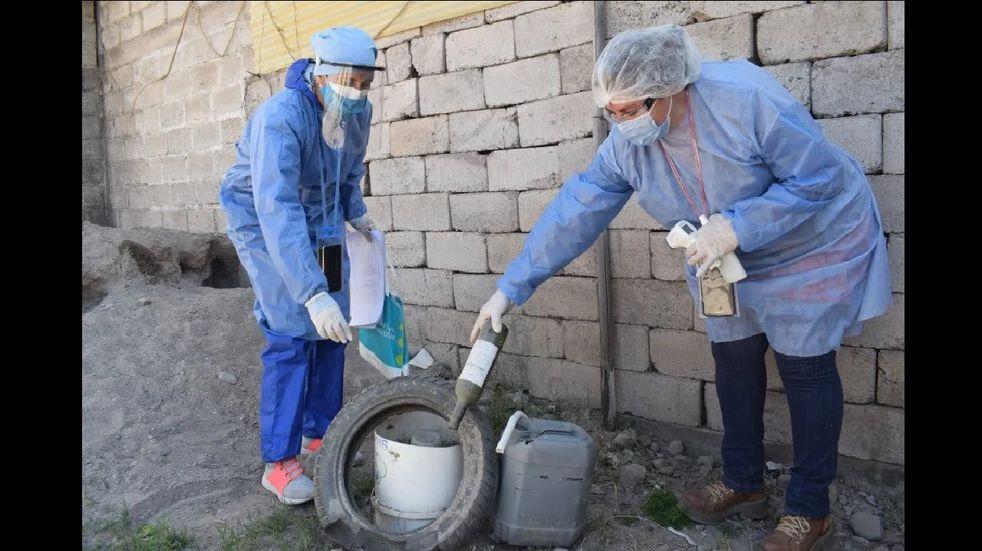 Los contagios por dengue en Jujuy crecen a razón de dos por día
