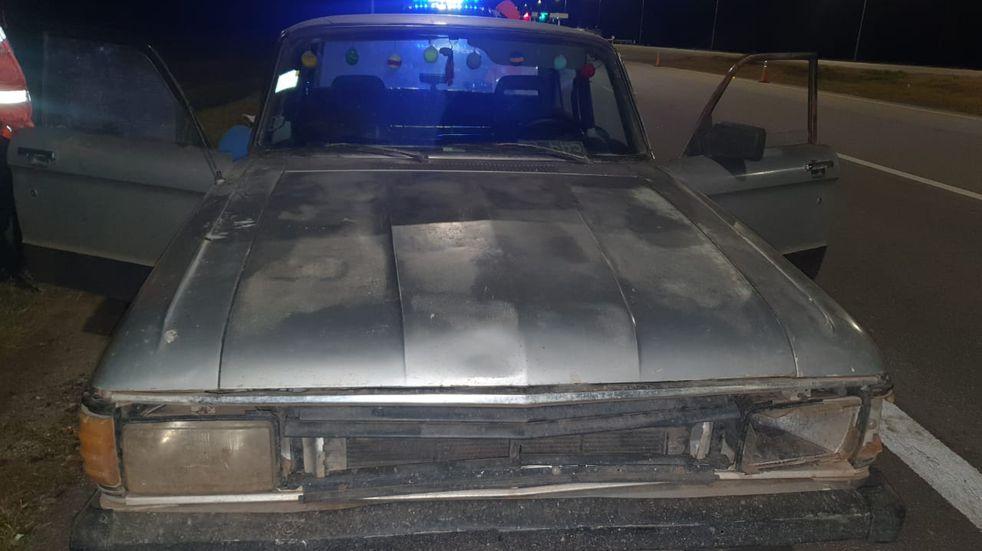 Córdoba: llevaban ocho lechones robados, en el baúl