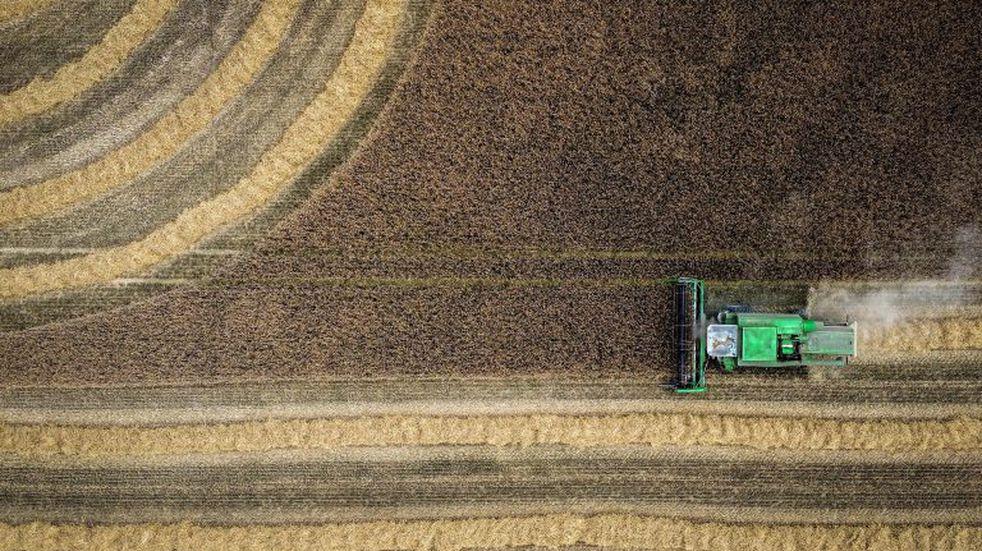 Claves para una cosecha mas eficiente