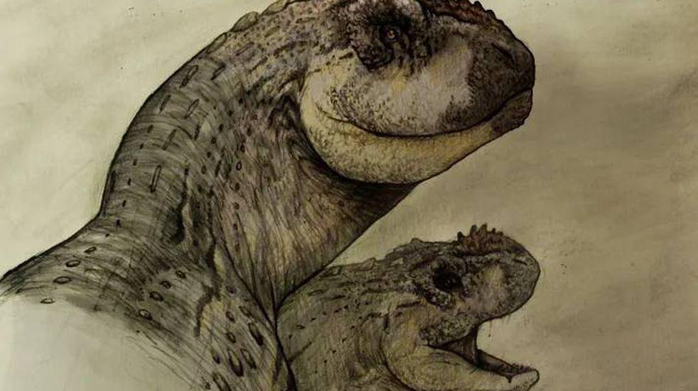 La National Geographic compartió el nuevo descubrimiento de un dinosaurio en Roca