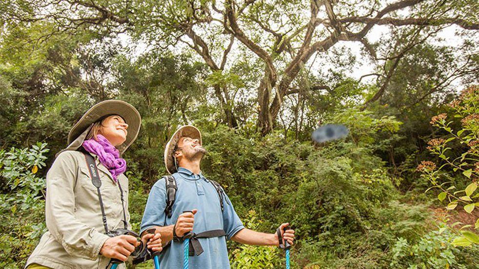 Destacan la belleza de las yungas salteñas y su potencial turístico