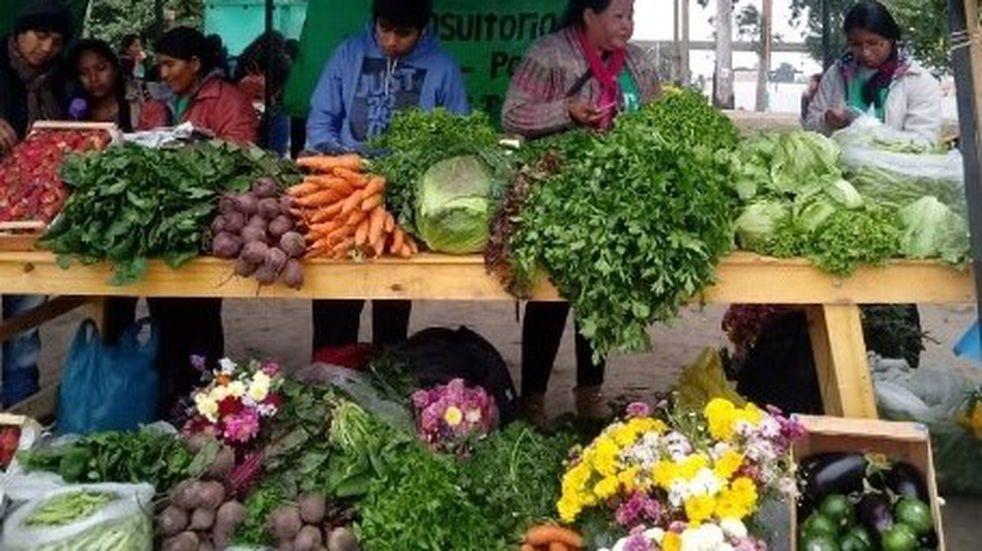 Pequeños agricultores jujeños cuestionan a los intermediarios