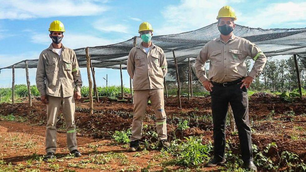 Espacio agroecológico en la Unidad Penal VI de Posadas
