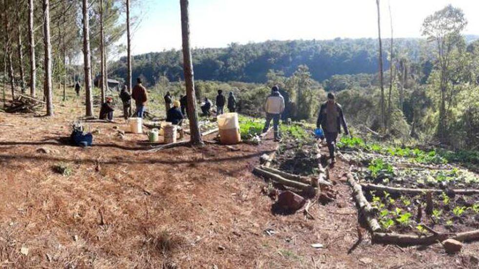 Denuncian toma de tierras en Puerto Piray