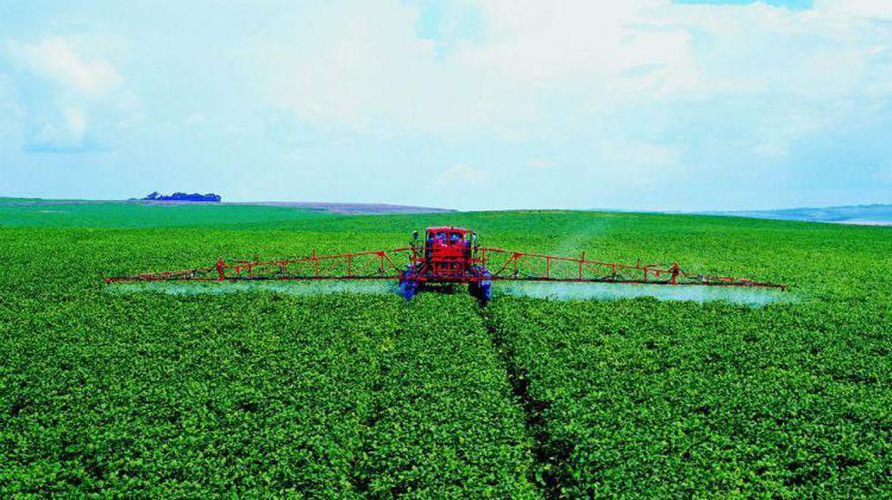 El consumo de fertilizantes continuará y aumentará para garantizar la seguridad alimentaria mundial