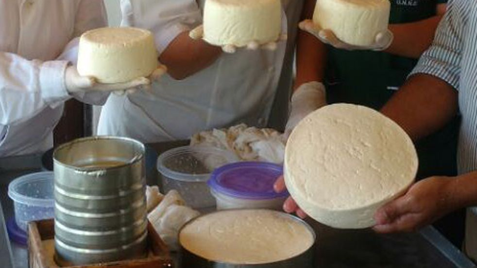 Más producción y mejora de calidad e inocuidad de quesos artesanales de la región