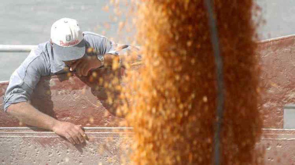 Suba de precios en los fletes de las exportaciones