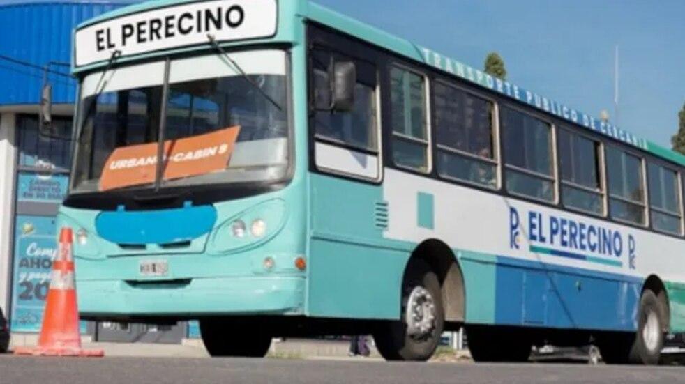 El Perecino: el servicio de transporte público gratuito cumplió un mes de funcionamiento